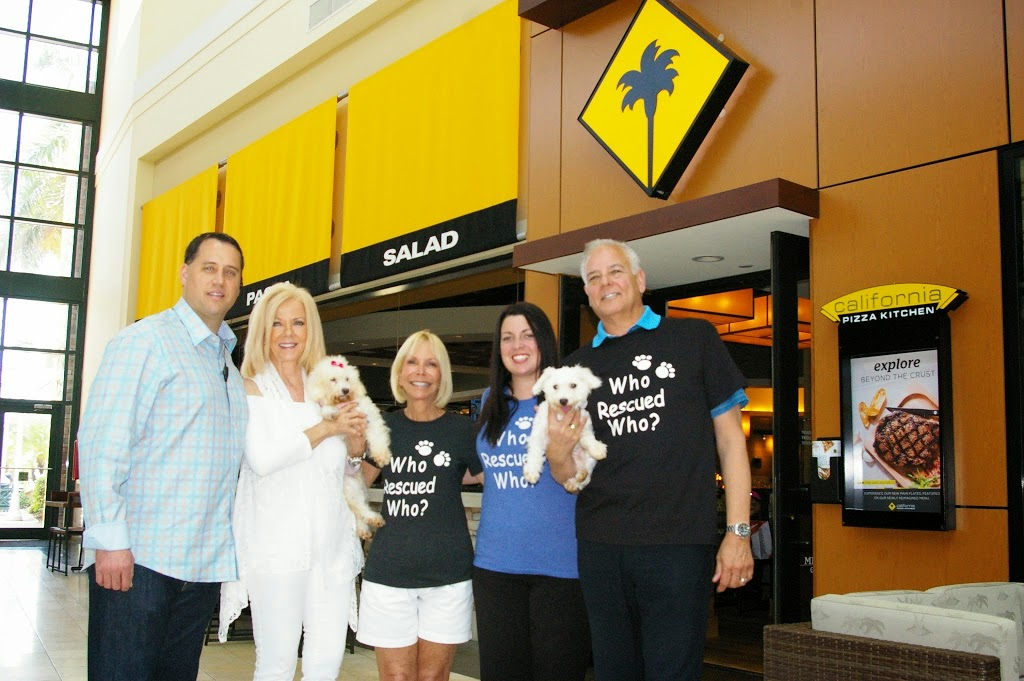 california pizza kitchen generic business strategy The company operates more than 150 full-service restaurants and 24 asap  quick-service locations  the strategy behind california pizza kitchen was  simple.